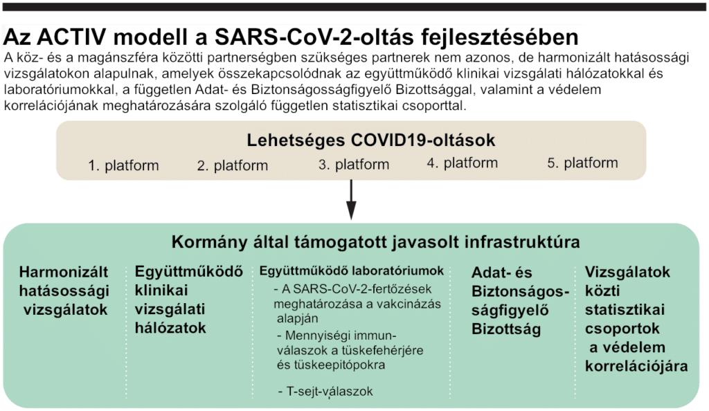 Az ACTIV modell a SARS-CoV-2-oltóanyag fejlesztésében