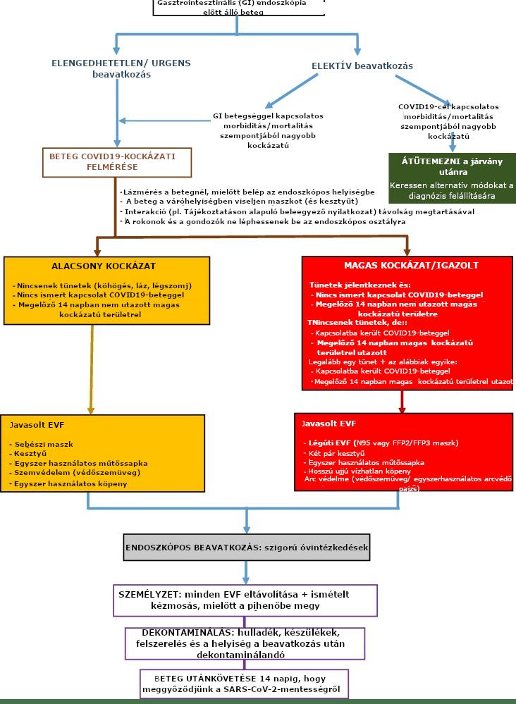 Gasztrointesztinális endoszkópia javasolt munkafolyamata