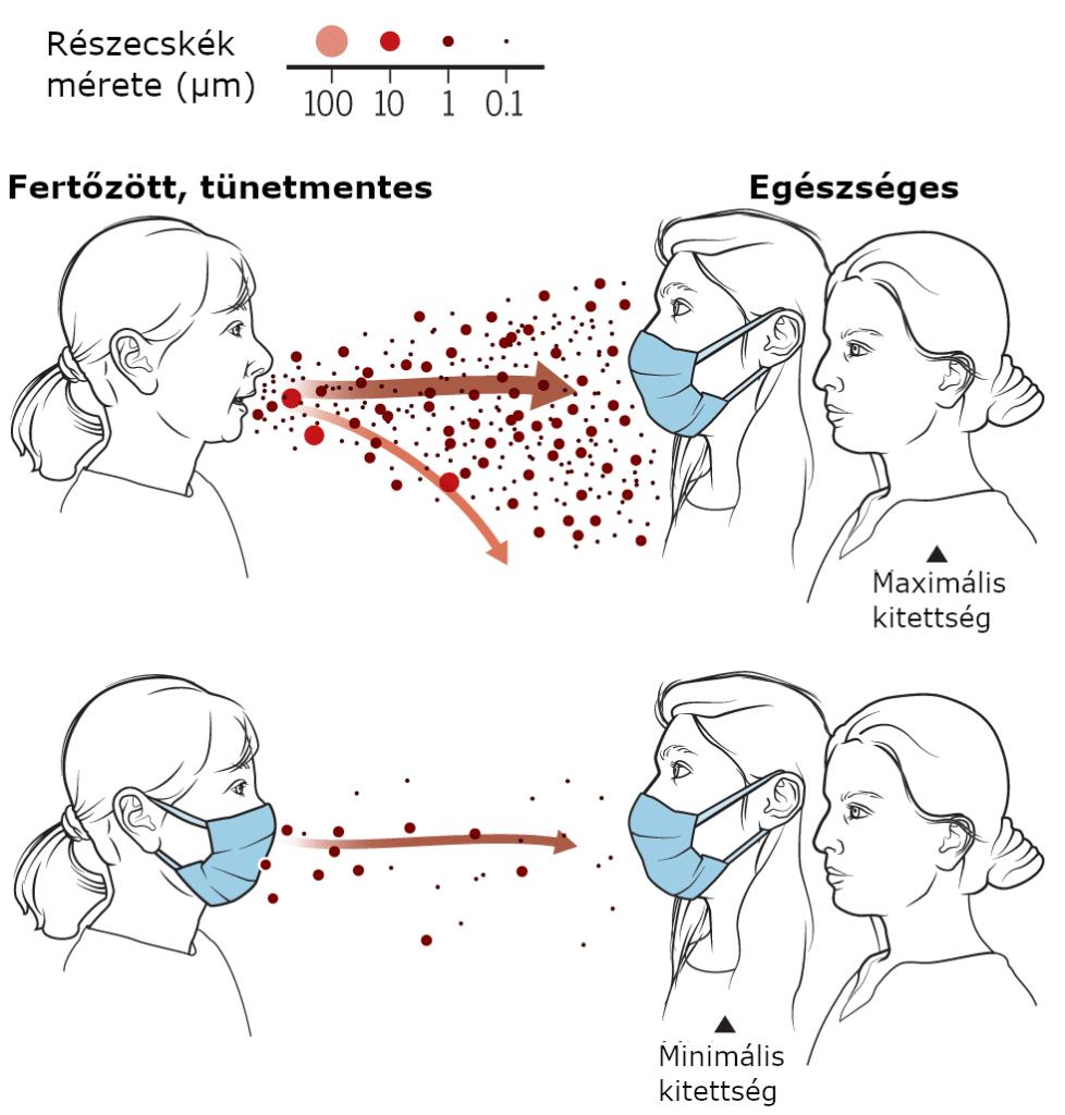 A SARS-CoV-2 terjedésének megelőzését segíti a maszkviselés