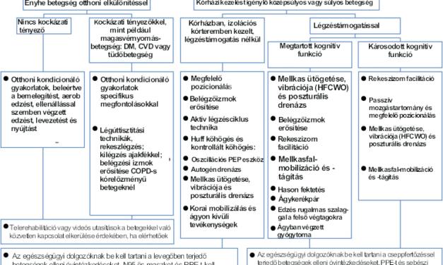 Rehabilitációs programok COVID19-betegek számára: a Tajvani Kardiovaszkuláris és Pulmonológiai Rehabilitációs Akadémia konszenzusos megállapításai
