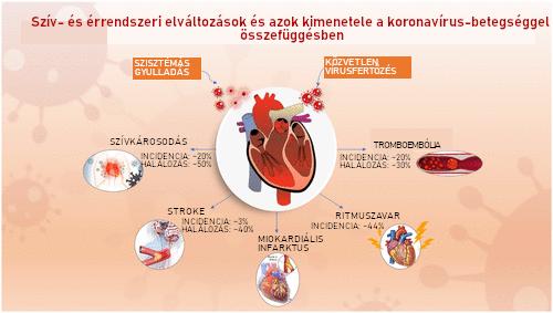 A COVID19-betegséggel összefüggő szív- és érrendszeri elváltozások és azok kimenetelének összefoglaló áttekintése